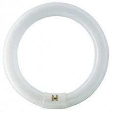 Λάμπα κυκλική 40W Ψυχρό Τ9 Υψηλής Aπόδοσης (Τριφωσφορικές)