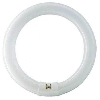 Λάμπα κυκλική 40WΨυχρό Τ9 Υψηλής Aπόδοσης (Τριφωσφορικές)